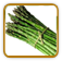 Non-Hybrid Asparagus Seed | Seeds of Life