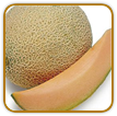 Non-Hybrid Cantaloupe Seed | Seeds of Life