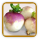Non-Hybrid Turnip Seed | Seeds of Life