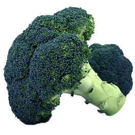 Broccoli: Waltham 29 | 2 g