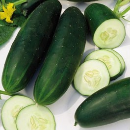 Cucumber: Straight Eight | 1/2 lb