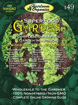 Superfood Garden