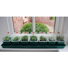 Super 7 Self Watering Propagator