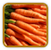 Non-Hybrid Carrot Seed | Seeds of Life
