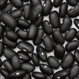 Beans: Black Turtle | 1 lb