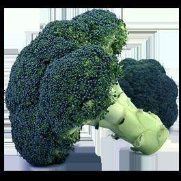 Broccoli: Waltham 29 | 1/2 lb