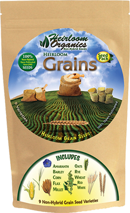 Grains Pack