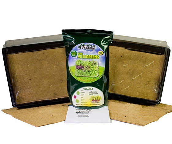 Home MicroGreens Kit