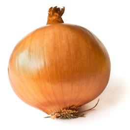Onion: Yellow Sweet Spanish Utah | 500 mg