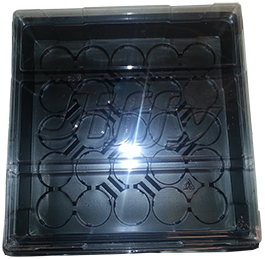 "10"" x 10""  Tray w/ clear lid - 3 pk."