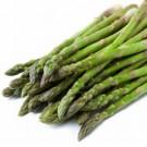 Asparagus: Mary Washington | 1.5 g