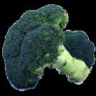 Broccoli: Waltham 29 | 2 g