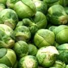 Brussel Sprouts: Long Island | 2 g